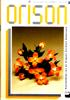Orison 1996-3